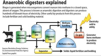 Digesters explained