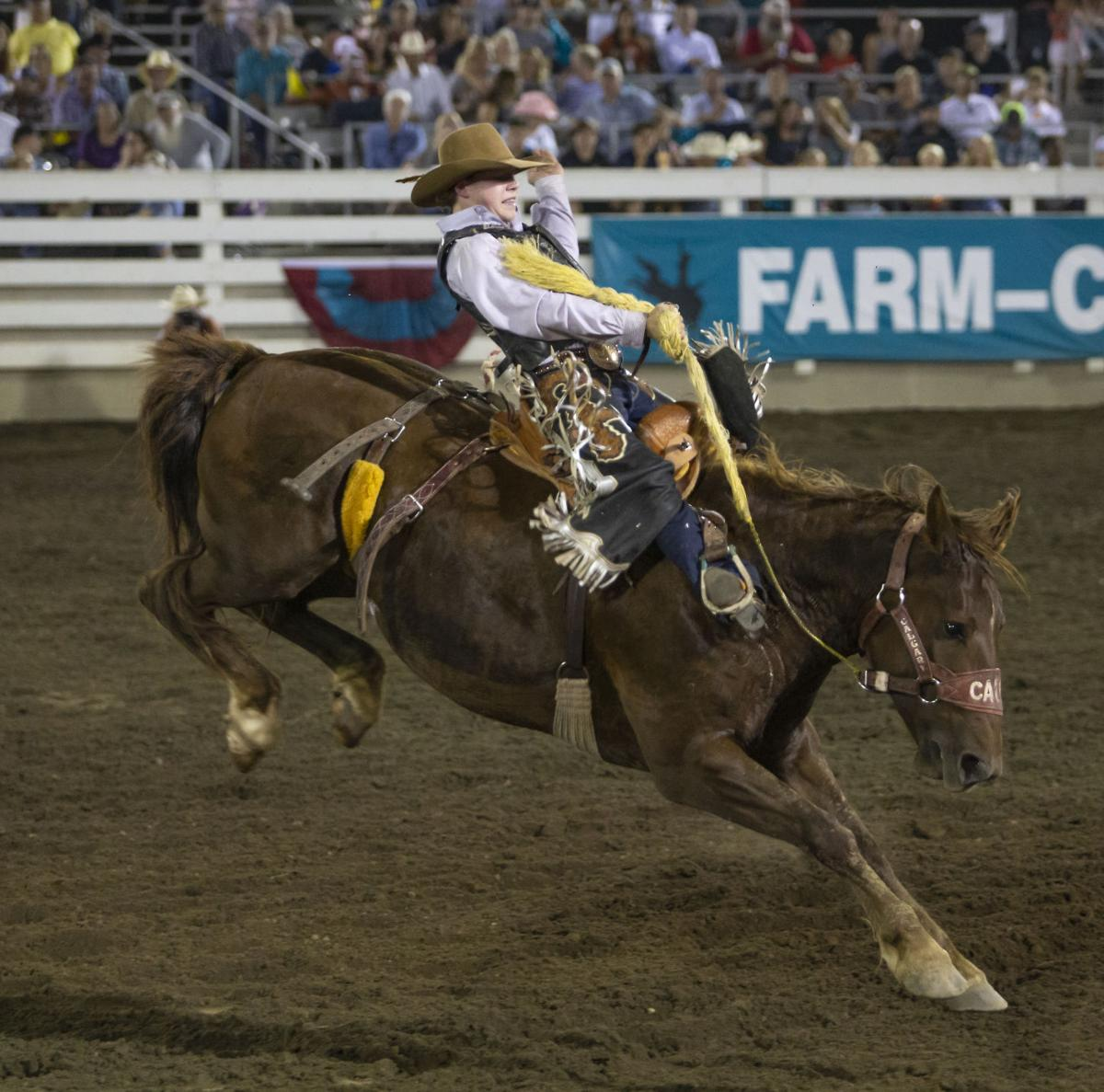 Rodeo Knowles Upstaged By Mother Nature Local