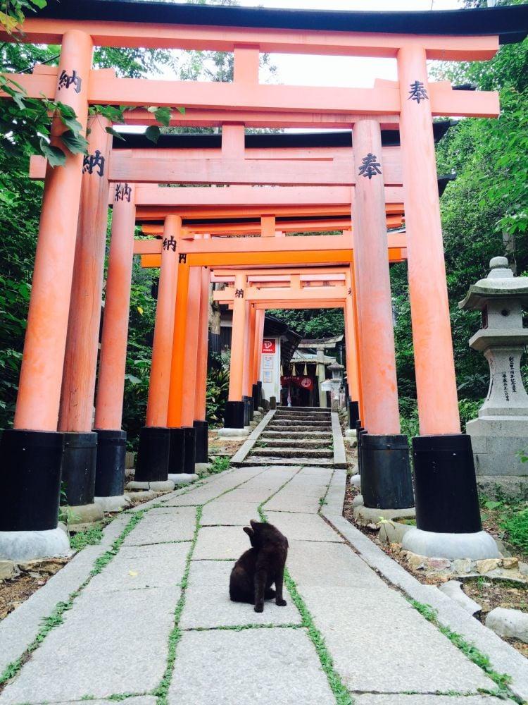 City of shrines
