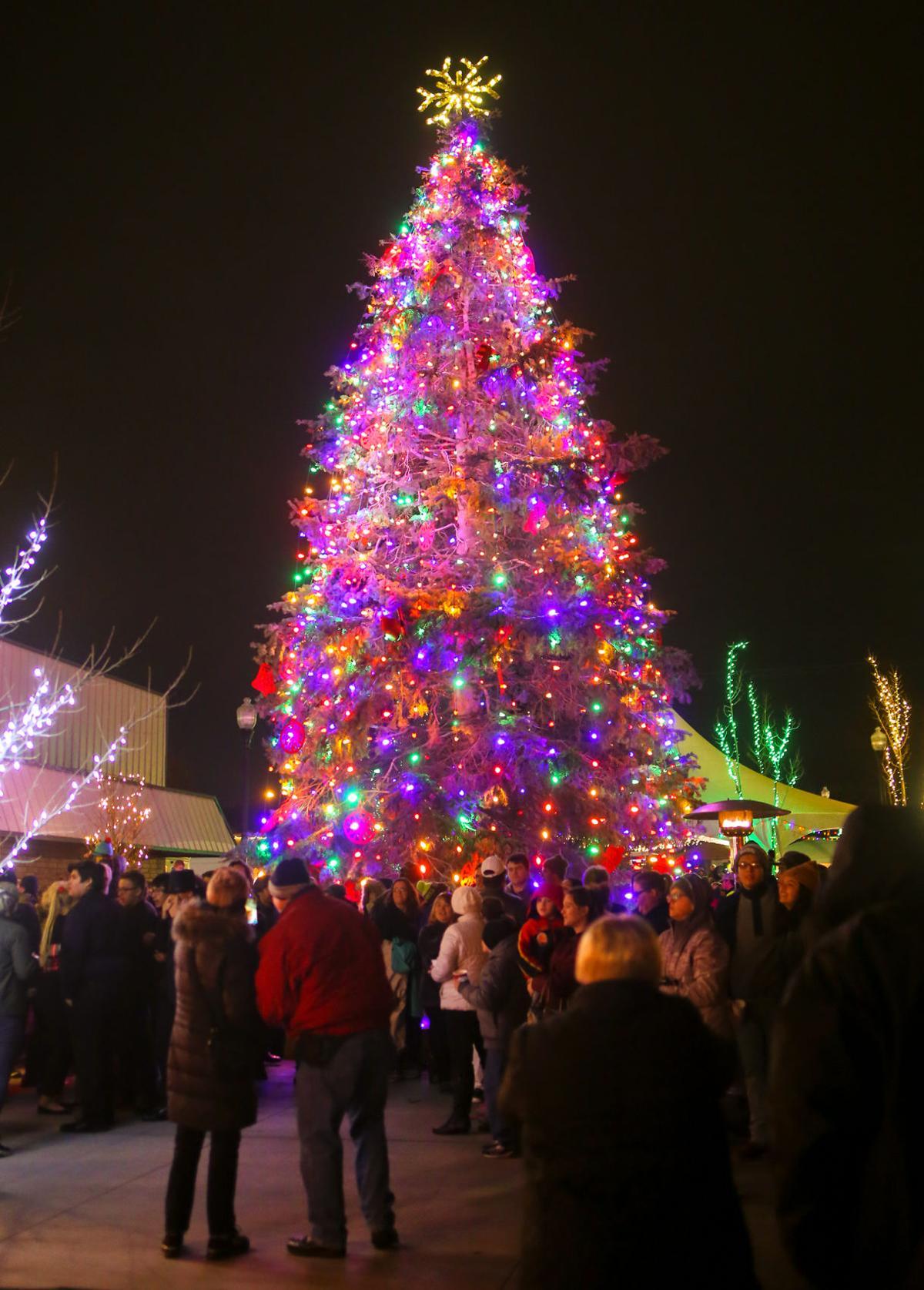 Hermiston tree lighting