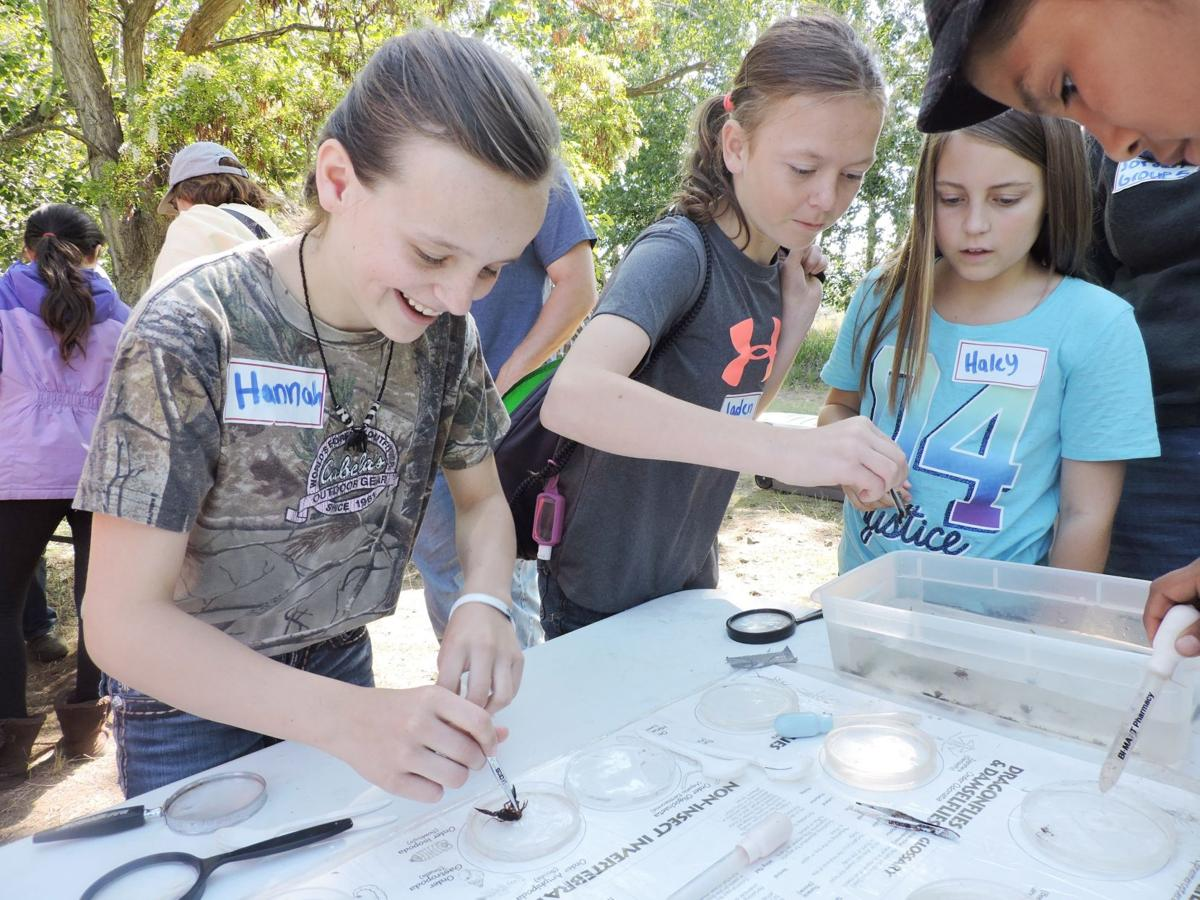 PENDLETON Fifth-graders learn hands-on about watershed health