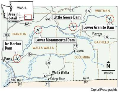 Snake River dam removal