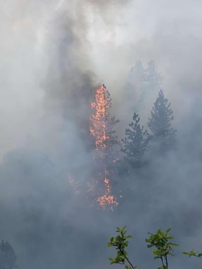 Bone Canyon Fire