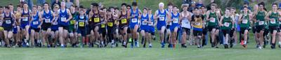 Cross-country | Bulldog Fest