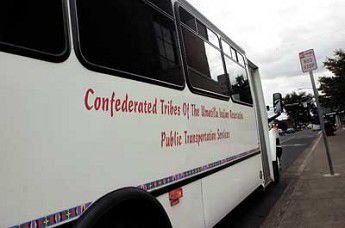 Bus system buzzes