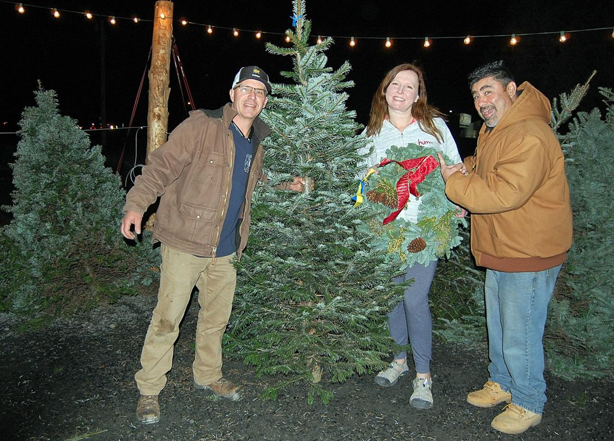New Christmas tree lot sprouts in Umatilla