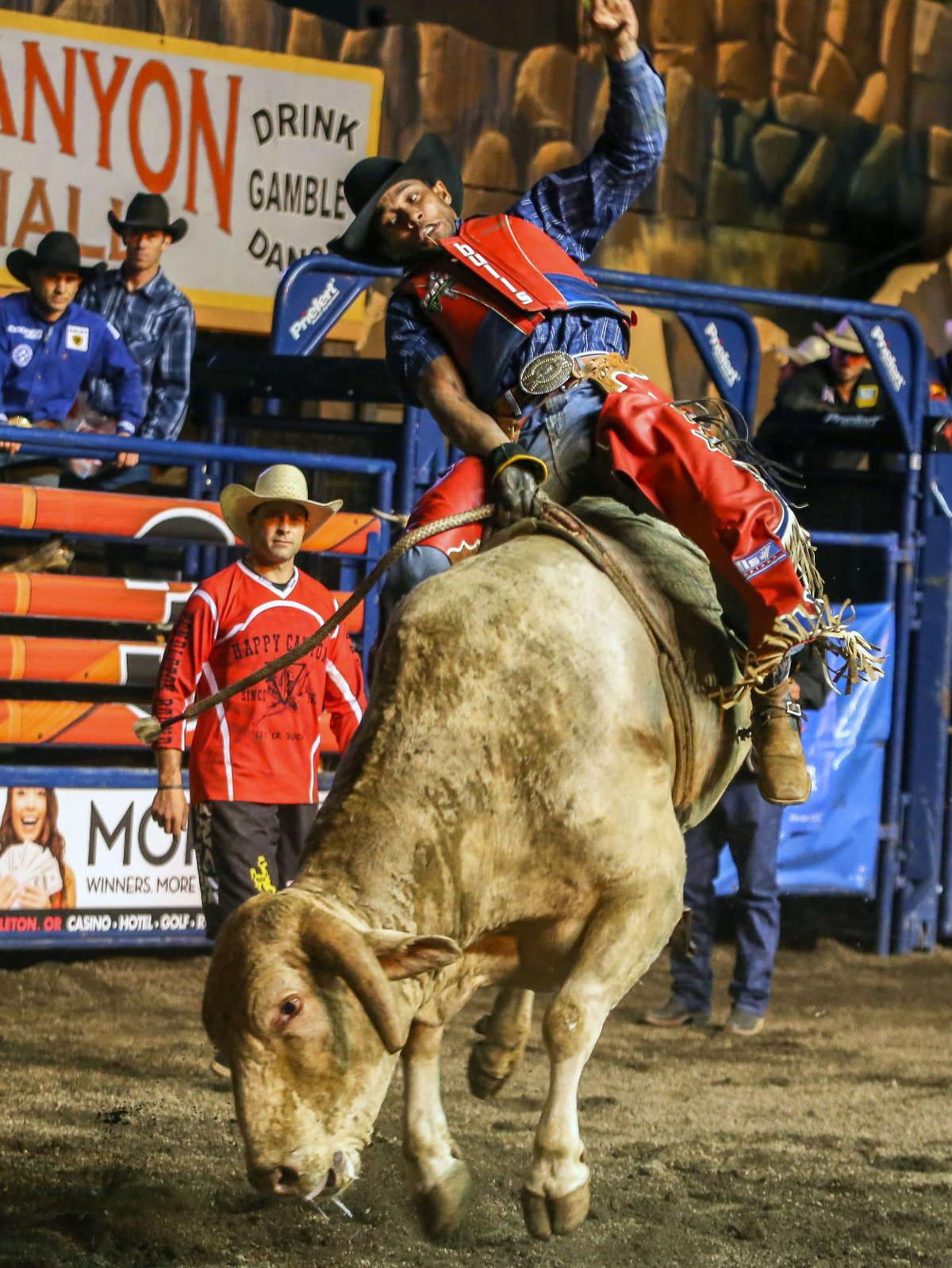 Rodeo | PBR night two