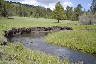 Forest Service signs Record of Decision for Lower Joseph Creek restoration