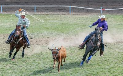 Debut pairing pays off in team roping