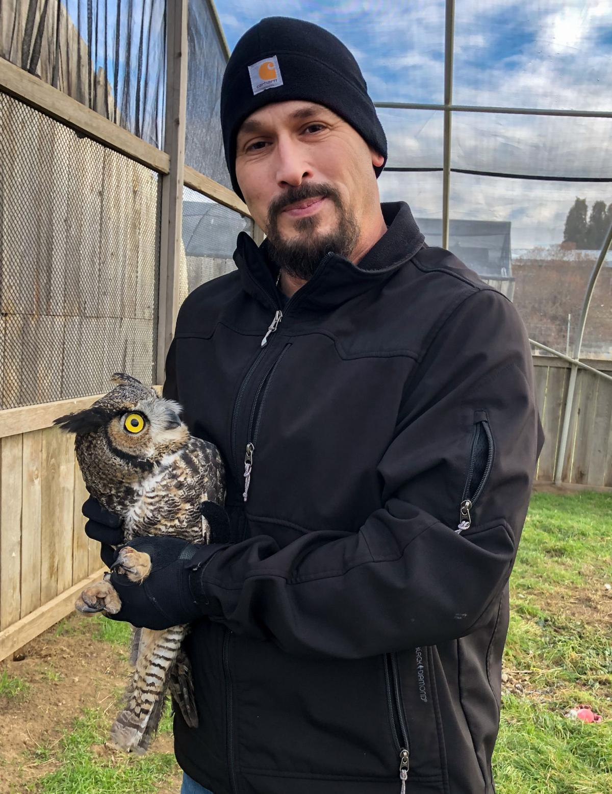 Trucker releases owl he saved back to wild
