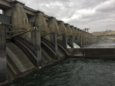 Dams.jpg