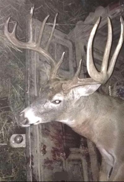 Pendleton man arraigned for poaching in Umatilla County