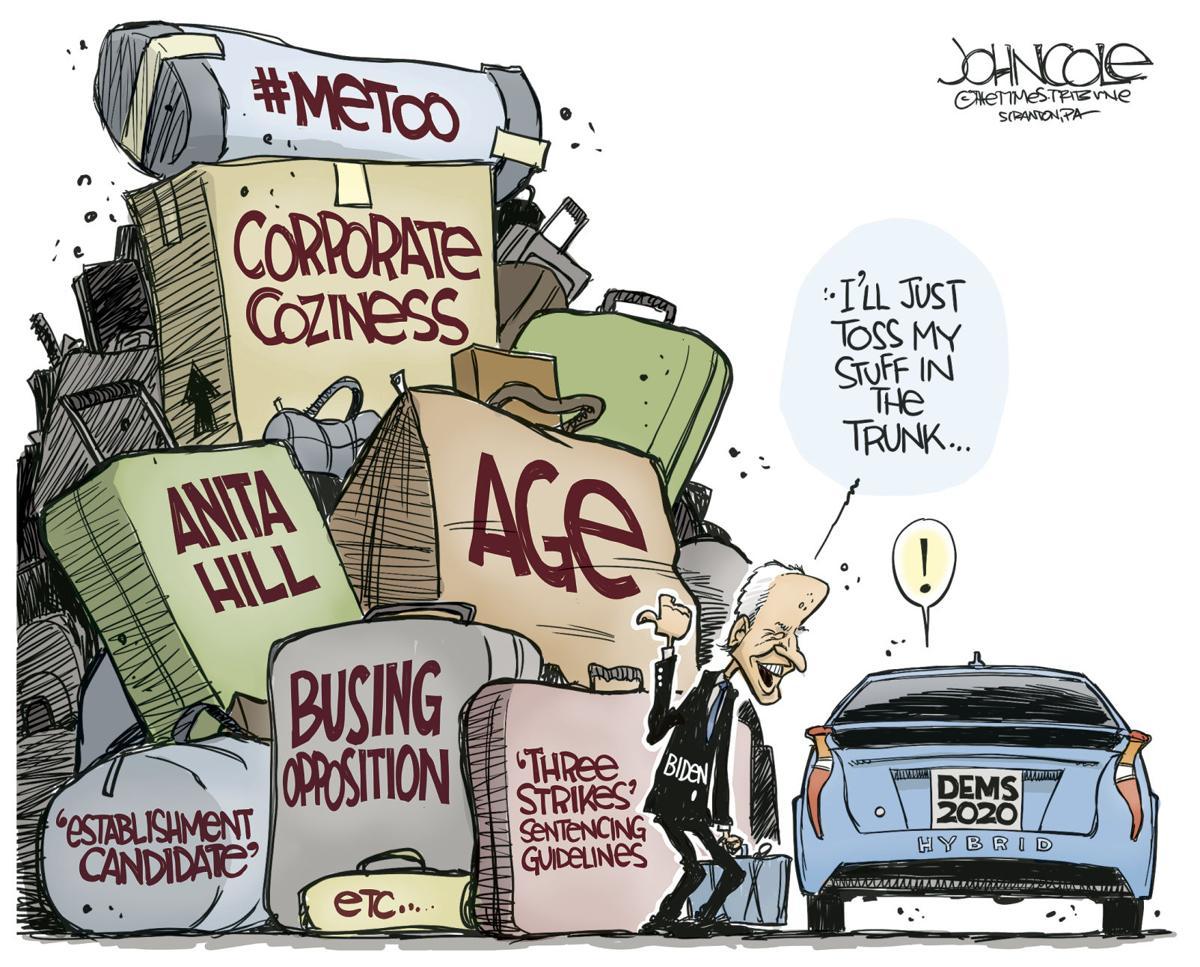 Image result for political cartoons 2020