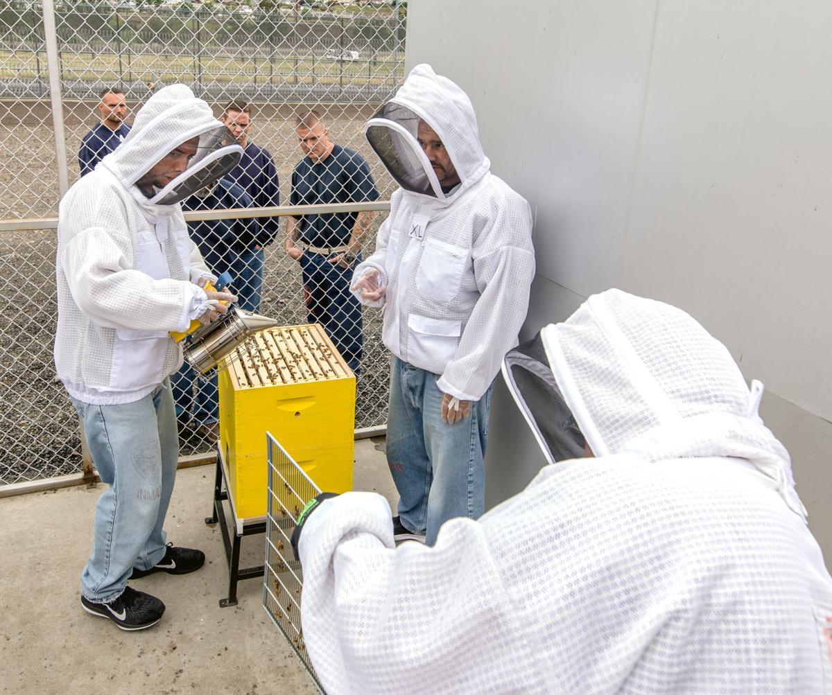 Queen bee makes prison break