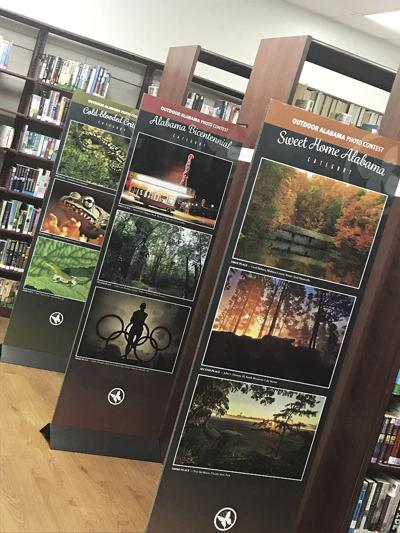 library photo contest display
