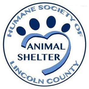 Shelter operating with limited hours, still adopting out pets