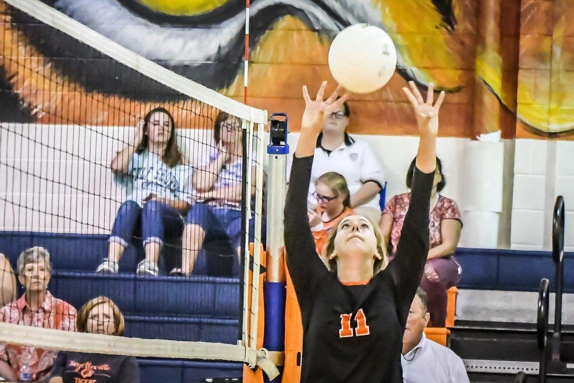 Lady Tiger Volleyball (1).jpg