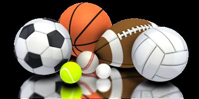sports briefs