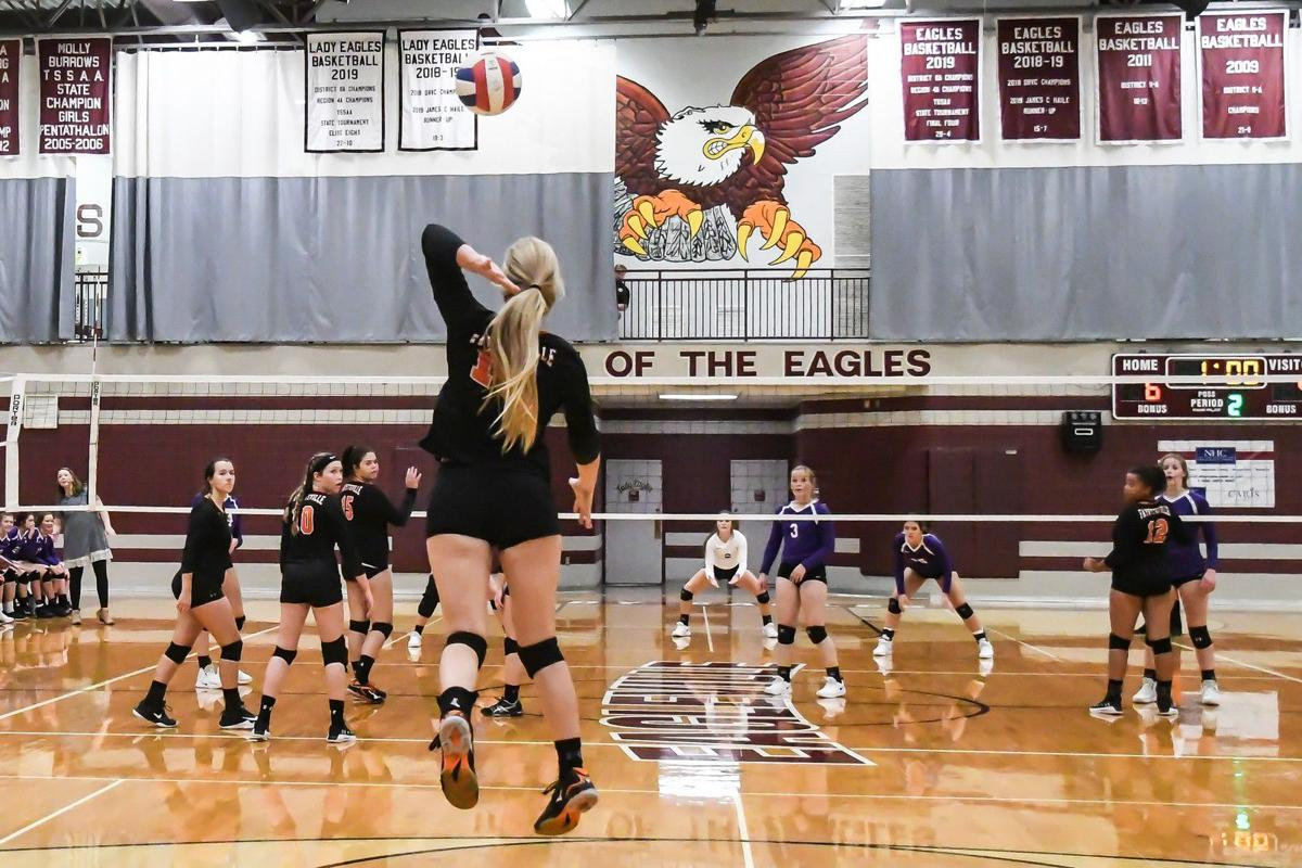 Z -- Lady Tiger Volleyball (1).jpg