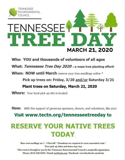 Lincoln Countians invited to plant trees on TN Tree Day