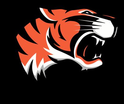 Lady Tigers get win over Lady Knights, drop heartbreaker