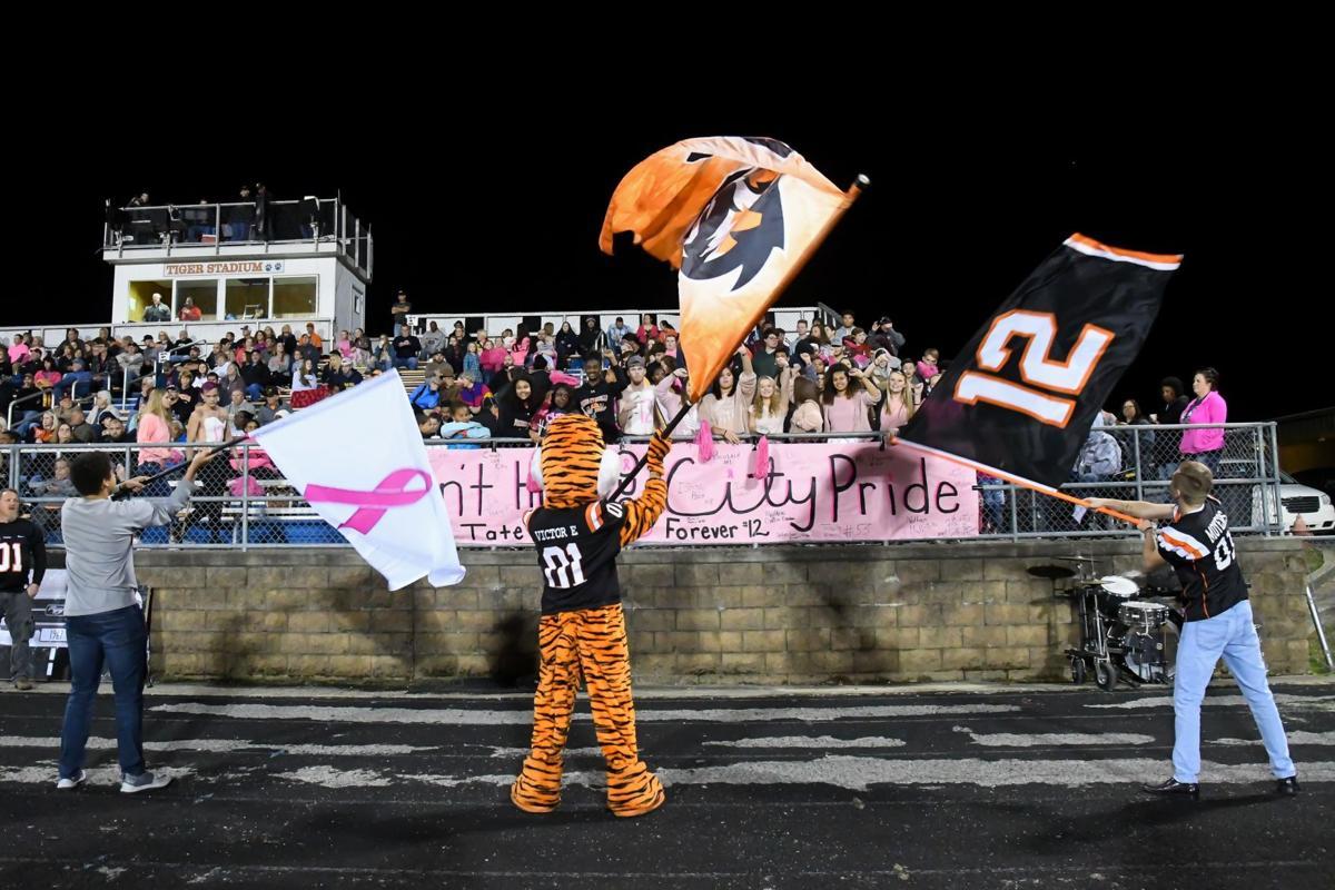 A - Tigers Season Wrap up (23).jpg