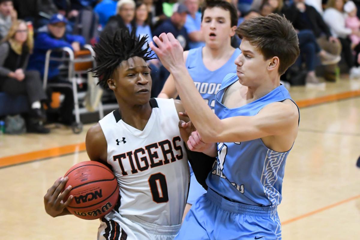 Tigers (1).jpg