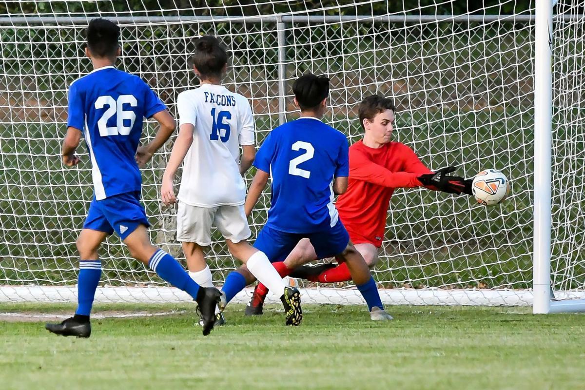 falcon soccer - shelbyville.jpg