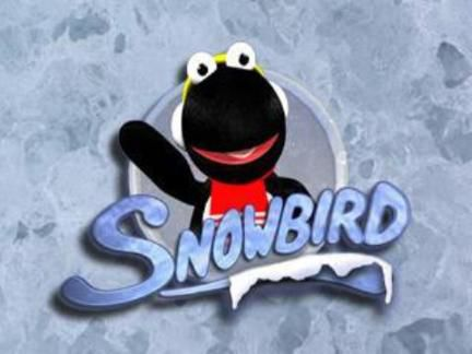 Snowbird to visit