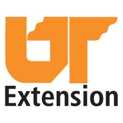 UT Extension