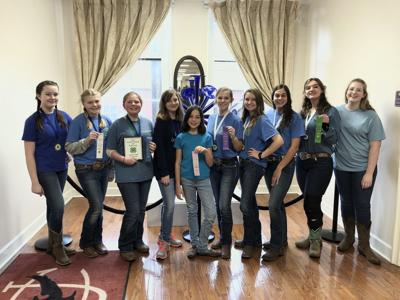 Local 4-H'ers  heading to state