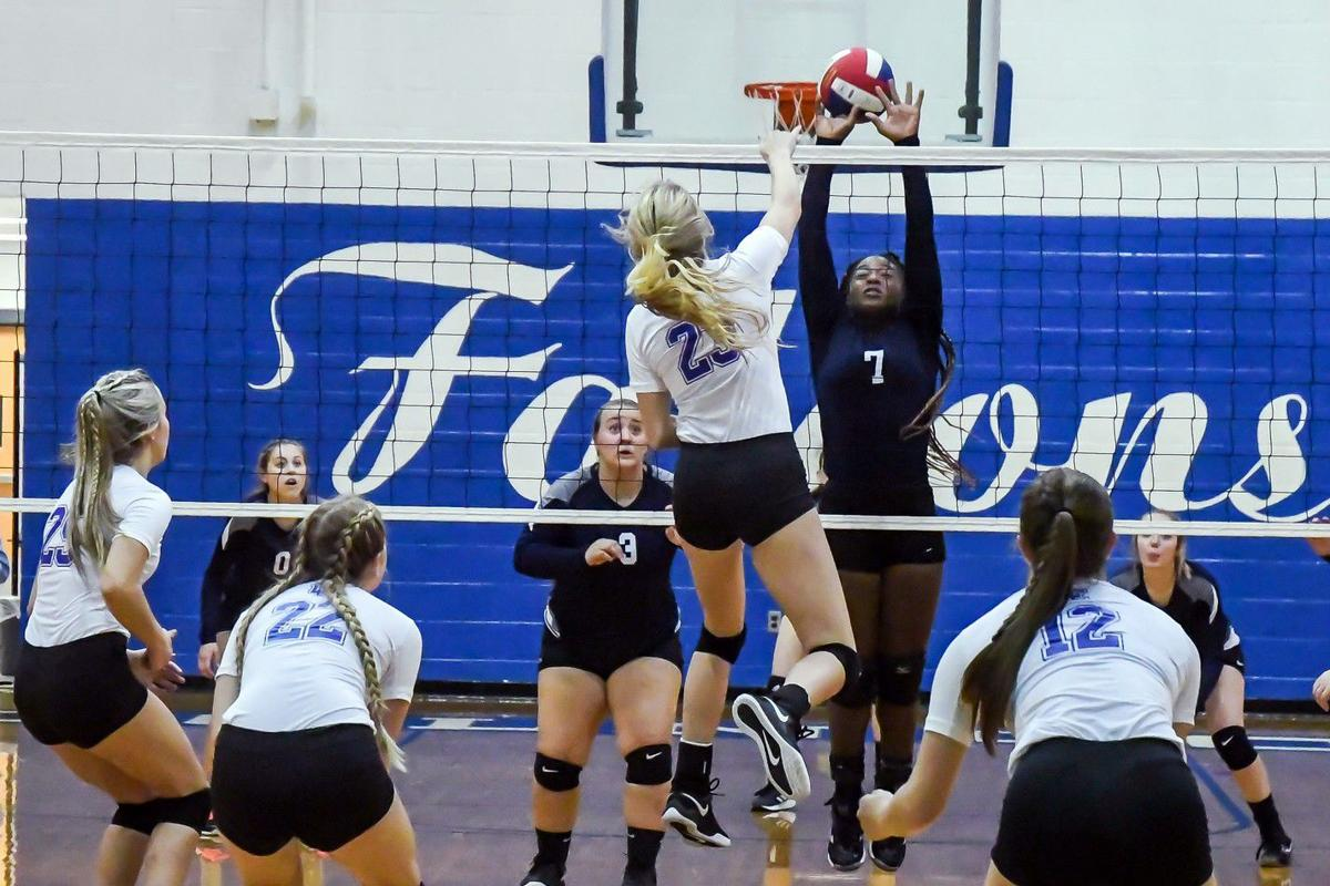 lady falcon volleyball.jpg