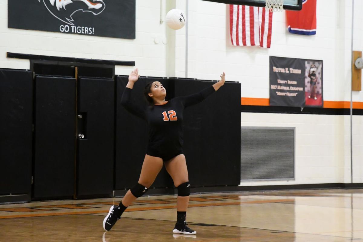 lady tiger volleyball - enrichment.jpg