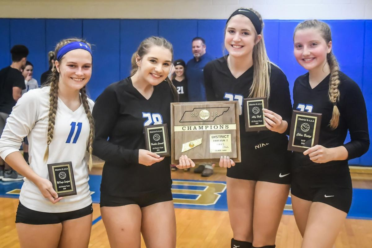 lady falcon volleyball - all district.jpg