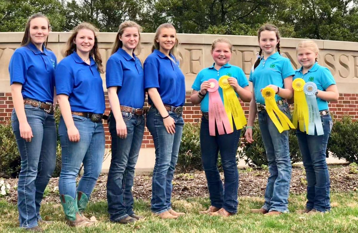 Local 4-H'ers fare well at state contest