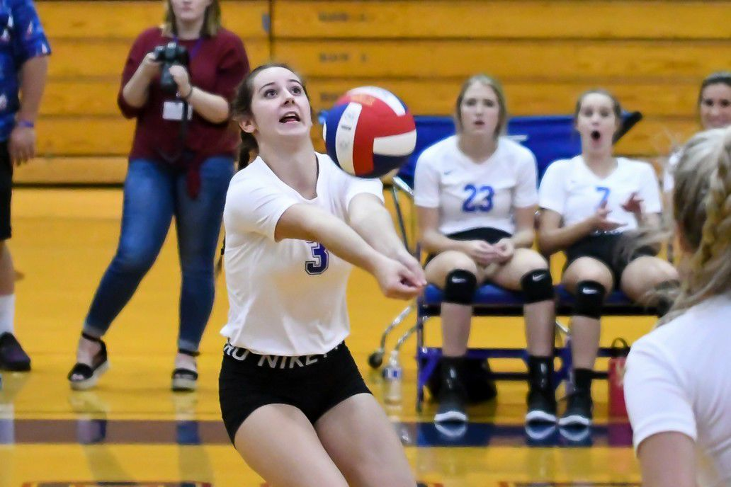 lady falcon volleyball - shelbyville.jpg