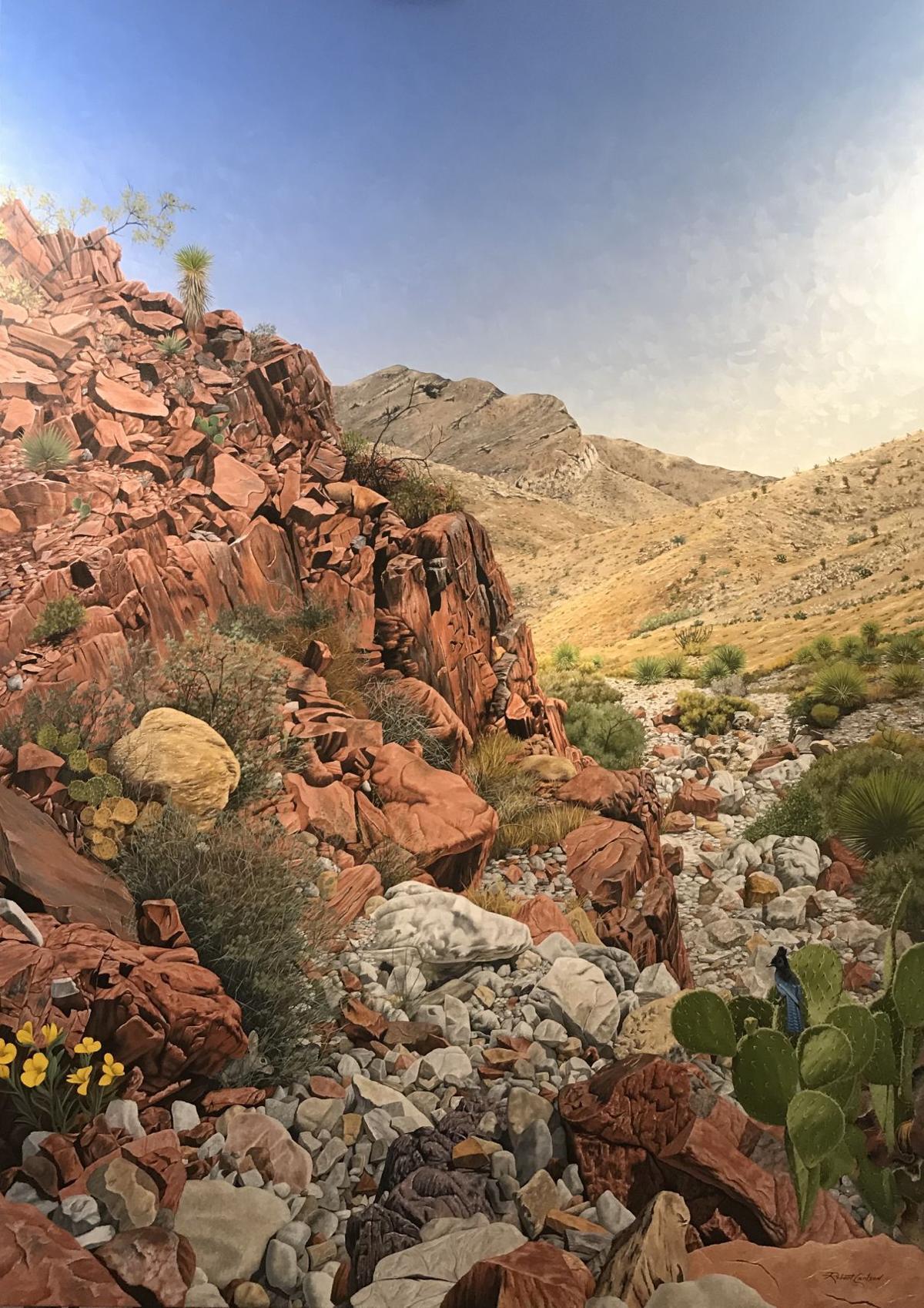 Desert Mountain Blue Jay.jpg