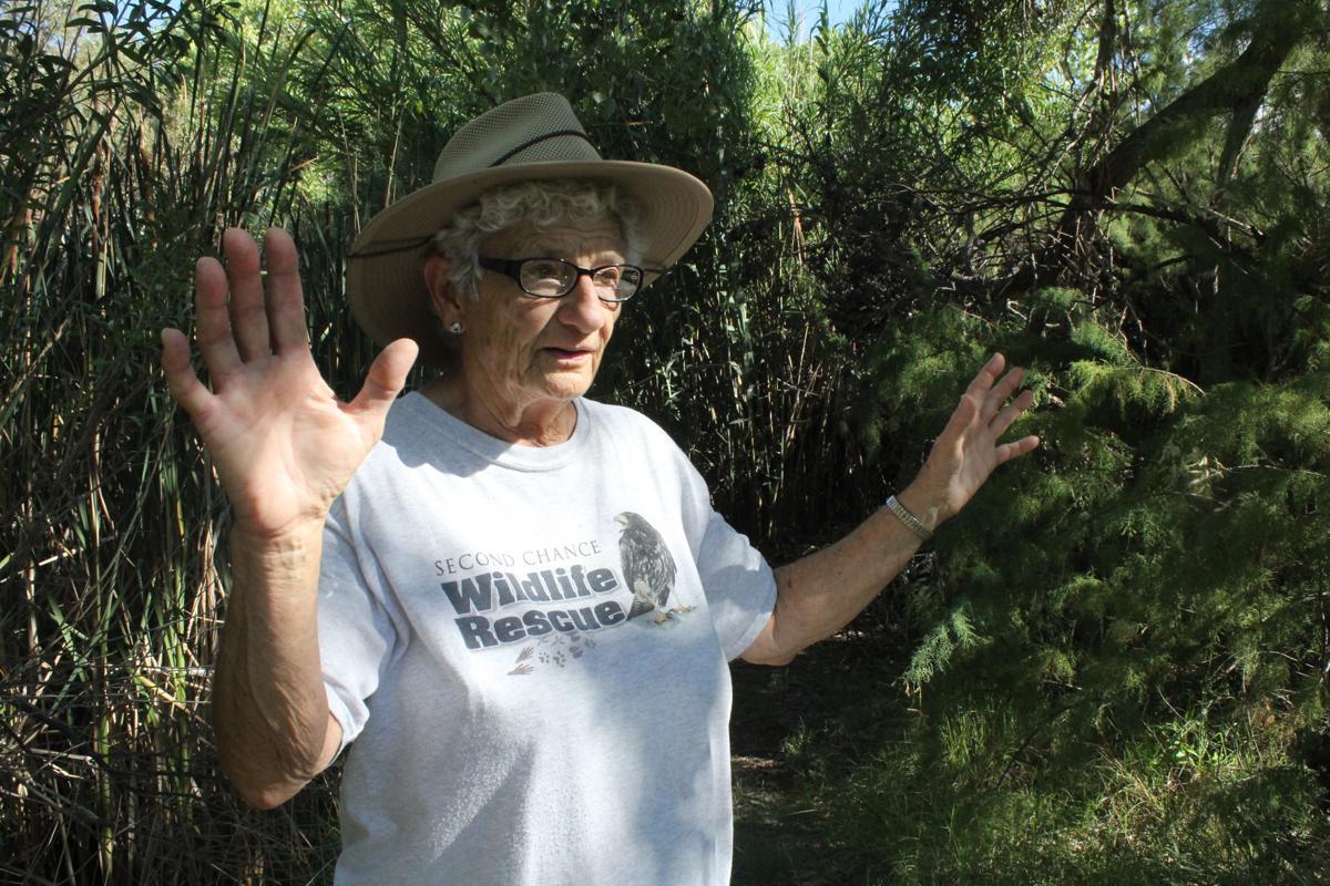 Josie Karam in the bosque