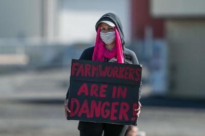 Trabajadora agrícola en Yakima (foto)