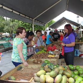 Mercados Familiares llegan al área Metro
