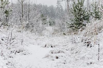 Google Maps actualiza ruta tras muerte por congelamiento