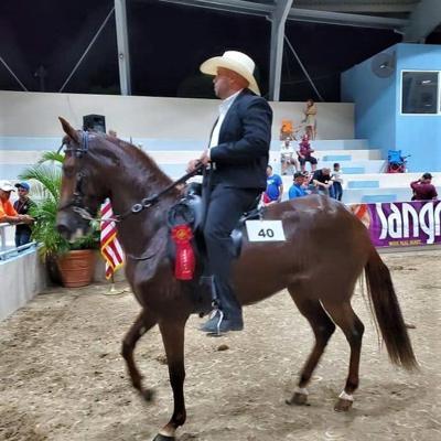 Culmina la edición 34 de concurso hípico en Fajardo