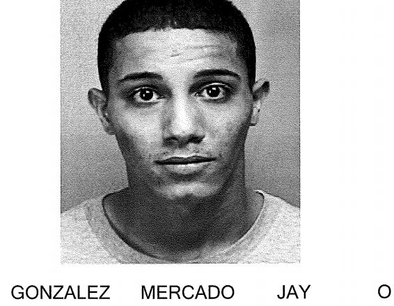 Ficha  Jay O'Neill González Mercado.
