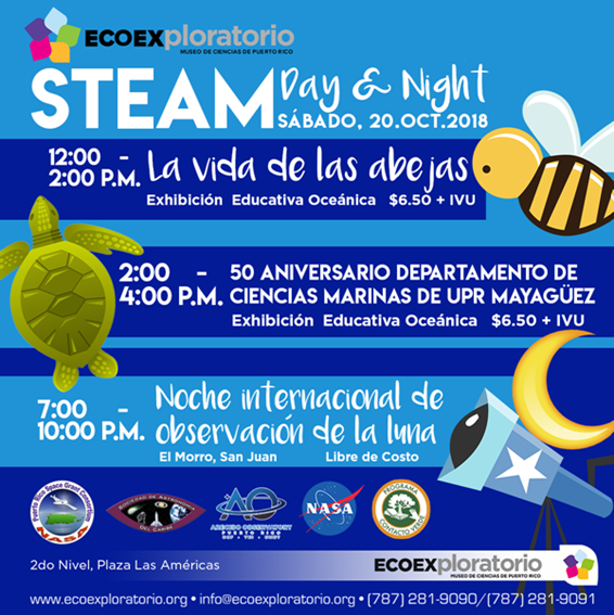 steam day and night