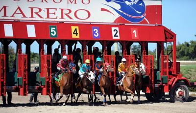 Hipódromo Camarero celebrará carreras sin público presente