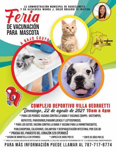 vacunas mascotas Barceloneta