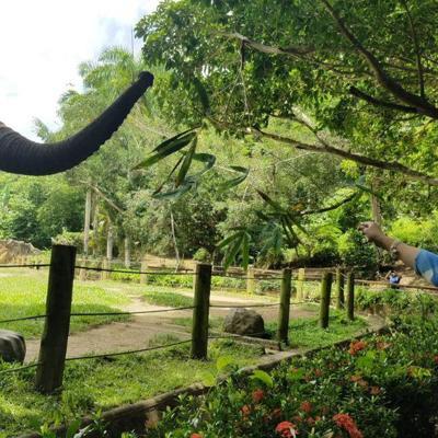Gobernadora visita el zoológico de Mayagüez