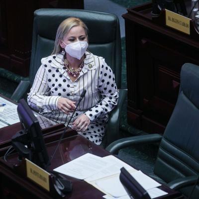 Caras Nuevas en la Legislatura: Jocelyne Rodríguez Negrón