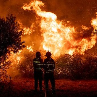 Más de 1,000 bomberos combaten incendio forestal en Portugal