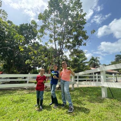 Daniel, Rodrigo y Lucas: los niños agroempresarios encargados de darle vida a la Finca Primavera